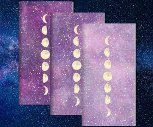 Designer Traveler's Notebook Inserts Set of 3: Moon Phases