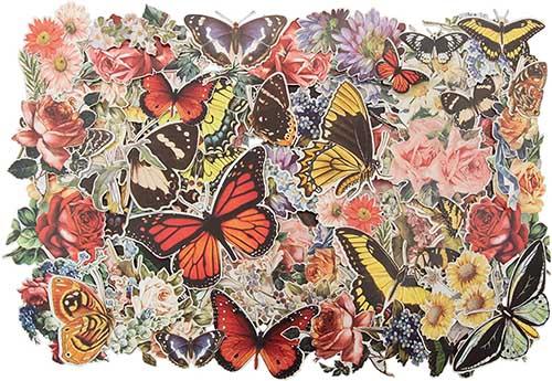Botanical Ephemera